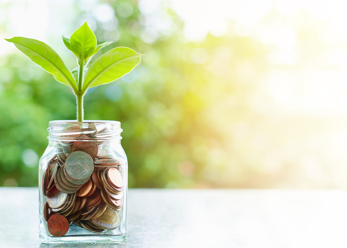Making Sense and Cents of EHS