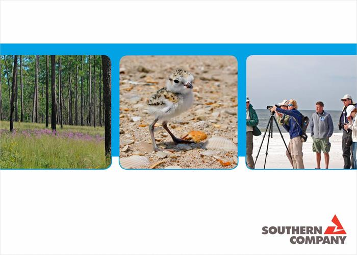 case-studies-naem-southern-companys-strategic-approach-to-conservation-leadership-700x500