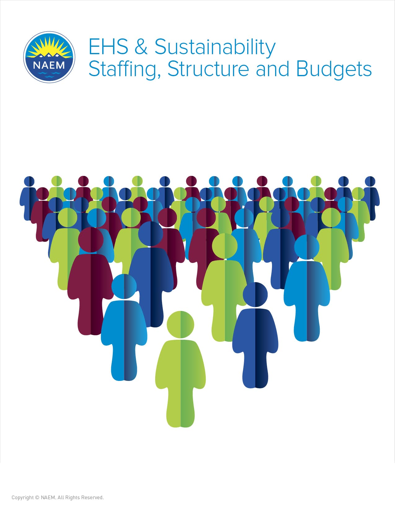 naem-research-reports-2016-ehs-and-sustainability-staffing-structure-and-budgets-benchmark-1560x2010
