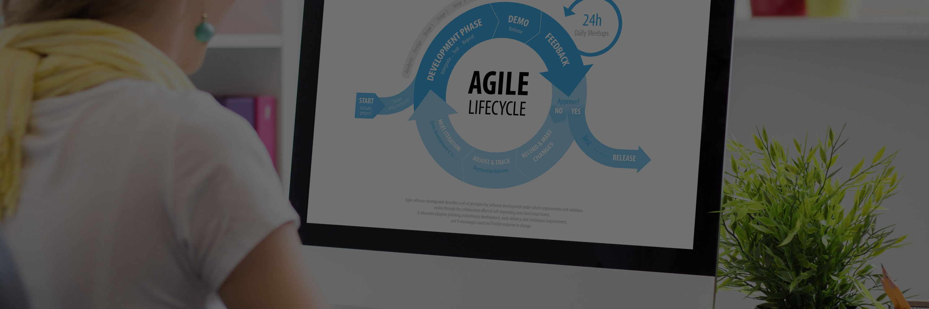 naem-webinar-2019-how-agile-leads-to-win-win-software-implementation-1800x600