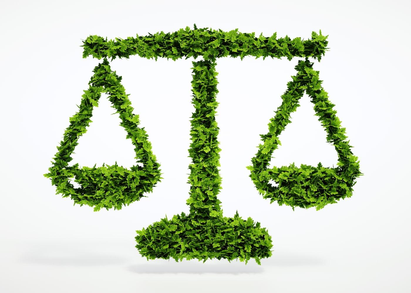 naem-2021-webinar-banner-carbon-offsets-should-we-or-shouldnt-we-heritage-environmental-services-700x500